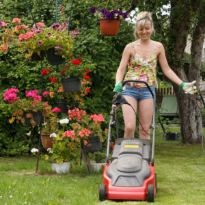 Ride On Mower Sales