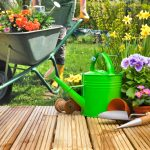 Garden Supplies That Are Required to Set Up a Vegetable Garden