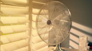 Best Oscillating Fans For Summer