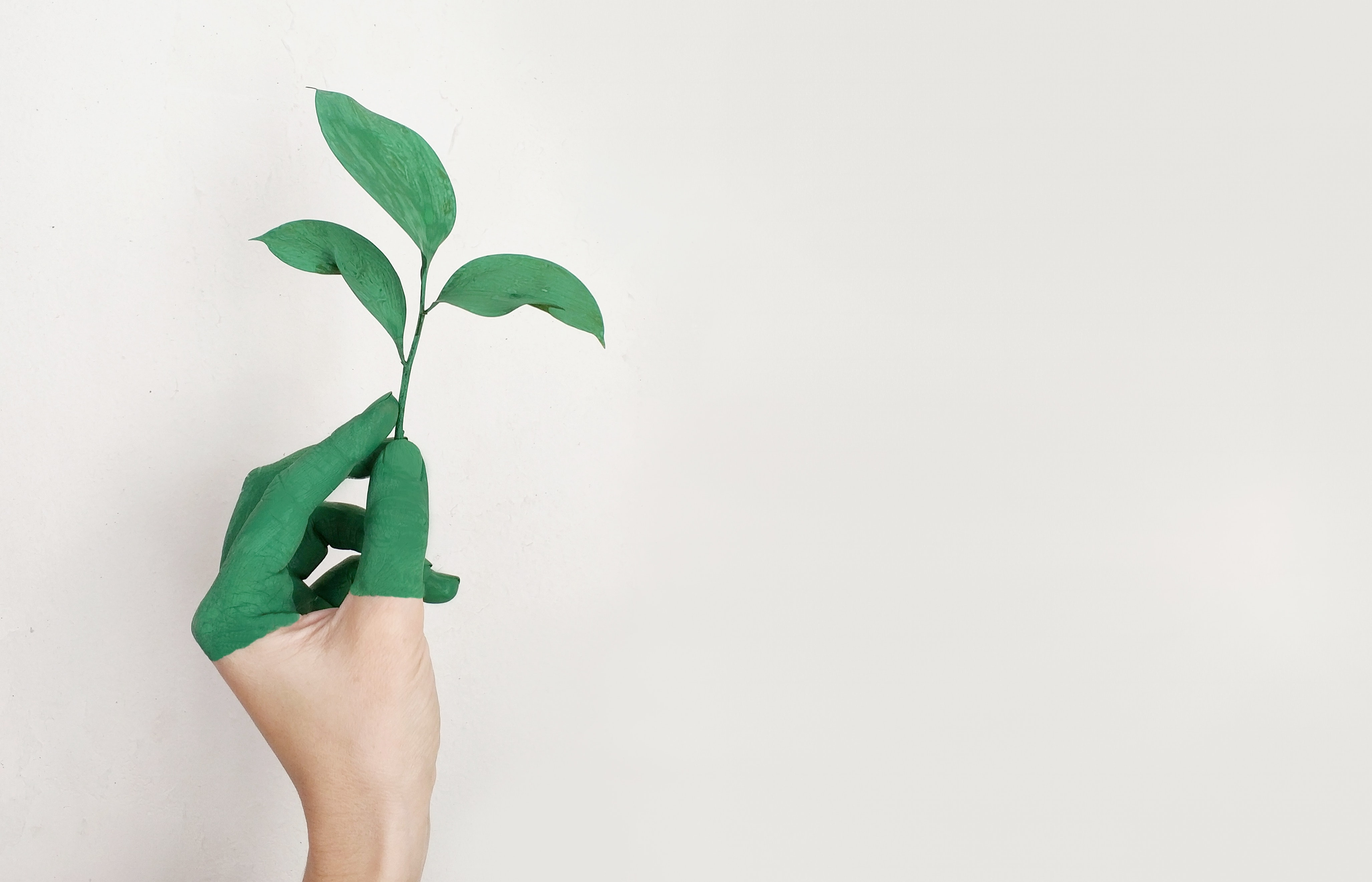 5 ways to make your home eco-friendly