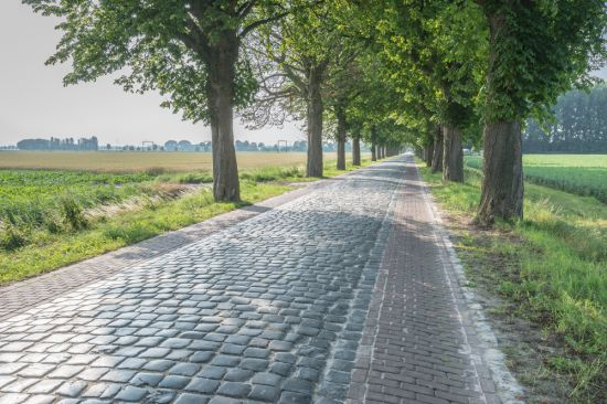 Road Materials and Pavement Design, Current trends for 2019