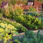 5 Tips to Prepare Your Garden for the Winter Season