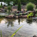 Own-backyard-Pond